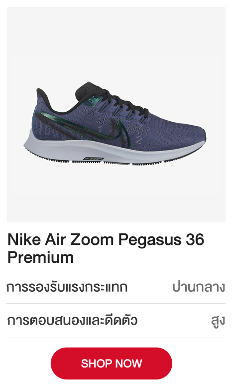 Nike-Air-Zoom-Pegasus-36-Premium